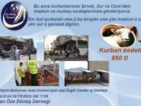 Kurbanlar Şırnak ve Sur'a
